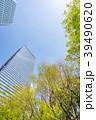 新緑 ビル 高層ビルの写真 39490620
