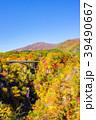 【宮城県】鳴子峡の紅葉 39490667
