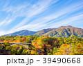 【宮城県】鳴子峡の紅葉 39490668
