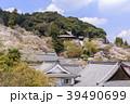 長谷寺 寺 桜の写真 39490699