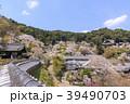 長谷寺 寺 桜の写真 39490703