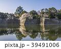 桜 天守閣 春の写真 39491006