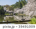 桜 春 名城公園の写真 39491009