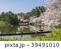 桜 春 名城公園の写真 39491010