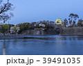 愛知県 名古屋城桜 夜景 39491035