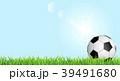 サッカーボール 芝 芝生のイラスト 39491680
