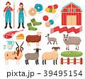 ひつじ ヒツジ 羊のイラスト 39495154