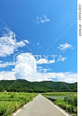 爽やかな夏の青空の風景 39501847
