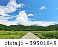 青空 一本道 田舎の写真 39501848