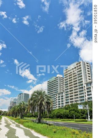 爽やかな青空のマンション街 39501850