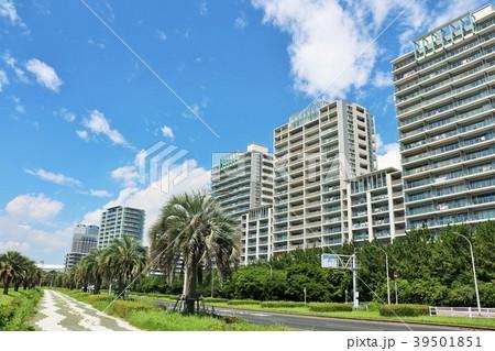 爽やかな青空のマンション街 39501851