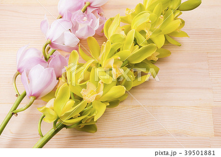 木のテーブルの上の緑色とピンクのデンドロビウムの花 39501881