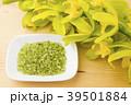 緑色のデンドロビウムの花とペリドットのさざれ石 39501884
