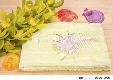 タオルと貝殻と洋蘭 39501890