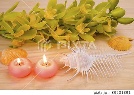 木のテーブルの上のキャンドルと貝殻と洋蘭 39501891