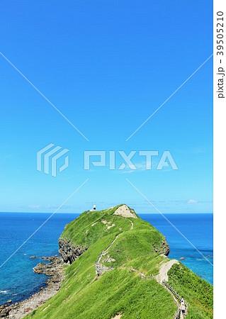 北海道 夏の神威岬と青い海 39505210