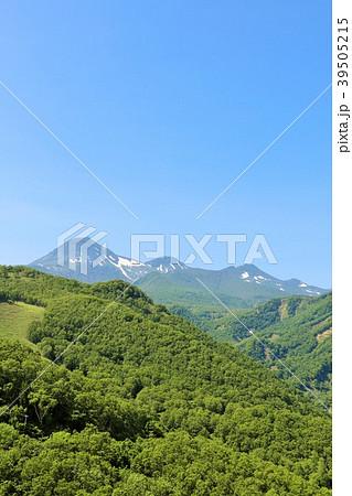 北海道 知床 羅臼岳 39505215