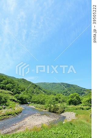 北海道 夏の知床 39505222
