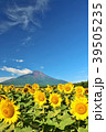 富士山 青空 夏の写真 39505235