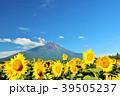 富士山 青空 夏の写真 39505237