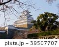 姫路城 桜 城の写真 39507707