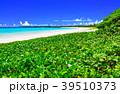 渡口の浜 伊良部島 浜辺の写真 39510373