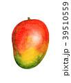 マンゴー 水彩画イラスト 39510559