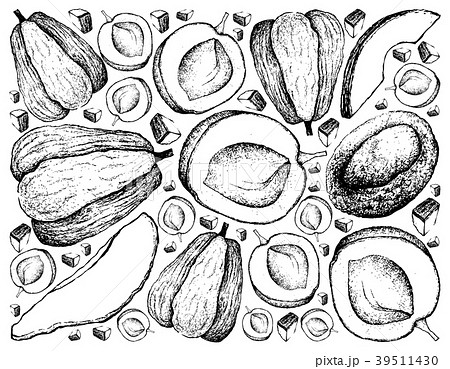 Background of Apricote and Chayote Fruits 39511430