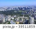 東京 都会 風景の写真 39511859