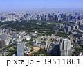 東京 都会 風景の写真 39511861