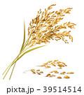 Rice Grain Illustration 39514514