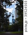 スカタワーを公園より 39524503