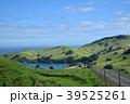 海への道 39525261