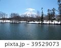 羊蹄山 山 蝦夷富士の写真 39529073