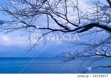 滋賀県高島市、湖北町で撮影した冬の琵琶湖風景 39536657