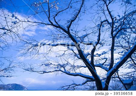 滋賀県高島市、湖北町で撮影した冬の琵琶湖風景 39536658