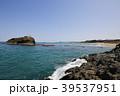 白兎海岸 海岸 海の写真 39537951