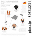 Dogs by country of origin. Balearic islands dogs 39538234