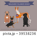 Dogs by country of origin. Balearic islands dogs 39538236