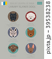 Dogs by country of origin. Canarian dog breeds 39538238
