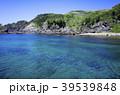 ヒリゾ浜 富士箱根伊豆国立公園 海の写真 39539848