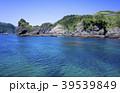 ヒリゾ浜 富士箱根伊豆国立公園 海の写真 39539849