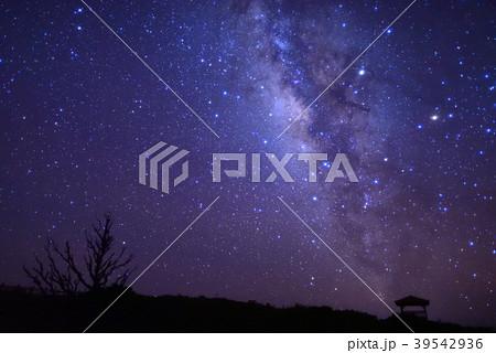 西表島の天の川星景写真 39542936