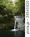 布曳滝 滝 赤目四十八滝の写真 39545920