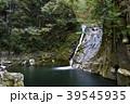 布曳滝 滝 赤目四十八滝の写真 39545935