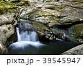 滝 赤目四十八滝 赤目四十八滝渓谷の写真 39545947