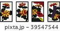 花札のイラスト|9月菊|日本のカードゲーム|ベクターデータ 39547544