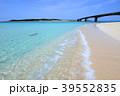 海 ビーチ 波打ち際の写真 39552835