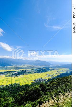 秋の農村風景(9月) 39553788