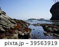 三陸ジオパーク茂師の海 39563919